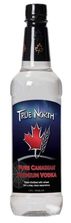 Image for TRUE NORTH