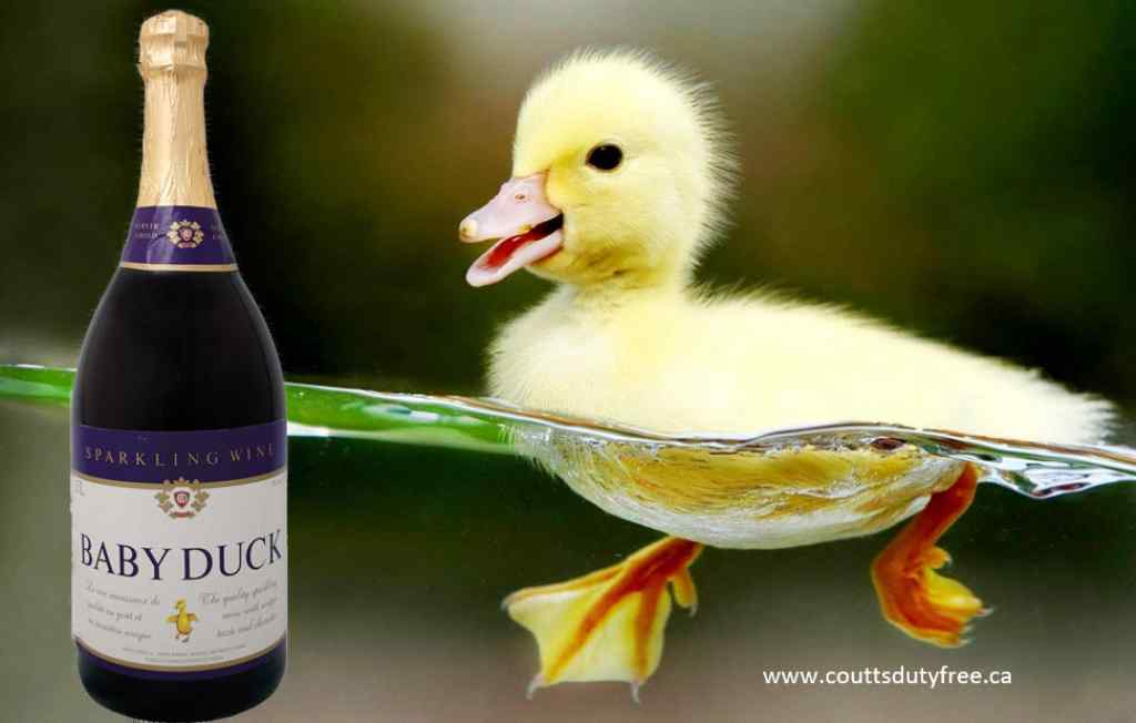 Thumbnail image for BABY DUCK SPARKLING WINE